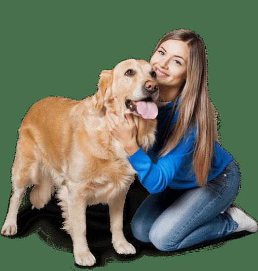 Pet Food Acitex Dog Owner