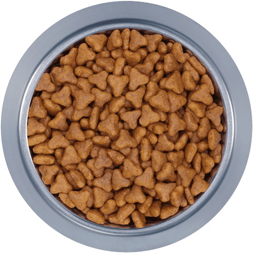Pet Food Acitex Dry
