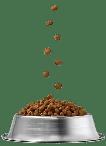 Pet Food Acitex Dry Croquet